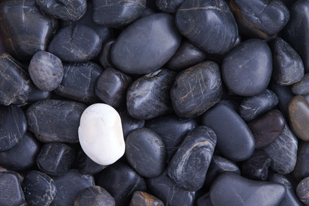 Individuality concept with a full frame background of weathered smooth black basalt pebbles with a single different white quartz stone Standard-Bild
