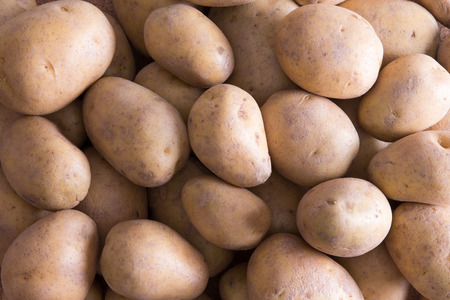accompaniment: Full frame  of whole raw farm fresh golden potatoes for a delicious nutritious vegetable accompaniment