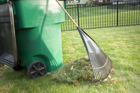 En ramassant l'herbe coupée au printemps lors de l'entretien de la cour avec un tas de coupures et un râteau étrille debout sur une pelouse soigneusement entretenues à côté d'une poubelle à roulettes en plastique pour le compostage Banque d'images - 38971661