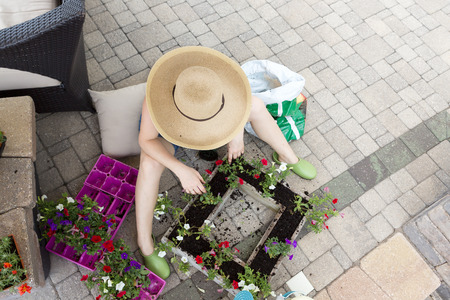 Lady gardener in a large straw hat planting colorful flower seedlings into a rectangular flowerpot to enhance her outdoor brick patio and home, view from above on a hot spring day with copyspace