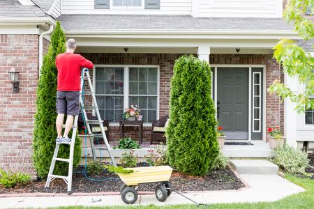 Travaux de jardin autour de la maison tailler thuyas ou thuya avec un homme d'âge mûr debout sur un escabeau en utilisant un taille-haie pour conserver la forme ornementale effilée Banque d'images - 40545323