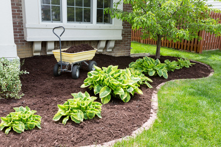 Garden maintenance in spring doing the mulching of the flowerbeds to keep down weeds and retain moisture in the soil Standard-Bild