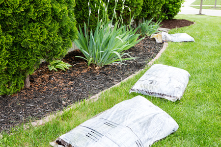 bark mulch: Garden work in spring mulching the plants growing in flowerbeds alongside the house with organic mulch such as bark or wood chips supplied in bags by the nursery