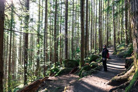 serpiente de cascabel: Se�ora senderismo en Snoqualmie washington rastro repisa de cascabel por s� misma bajo el bosque Foto de archivo