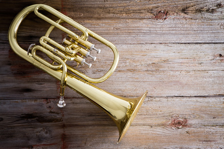 horns: Glossy Baritone Horn Musical Instrument on a Wooden Floor with Copy Space on the Right Side. Stock Photo