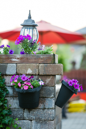 petunias: Detail of Stone Patio Pillar Decorated with Unlit Lamp and Purple Flowers in Hanging Pots - Recently Watered Flower Pots Hanging Off Stone Patio Pillar