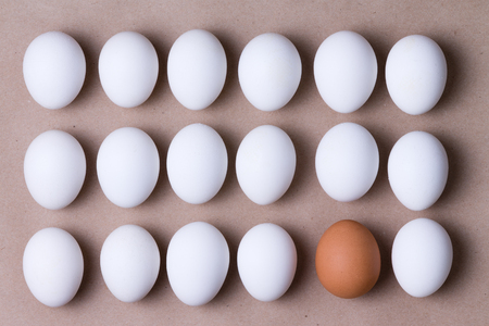 regimented: Rows of fresh white farm eggs with one brown one in the bottom row in a concept of individuality and diversity, overhead close up view