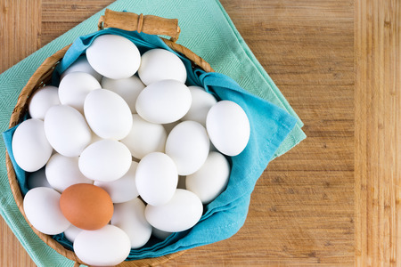 individualism: Wicker basket full of white eggs with one brown egg on the top in a conceptual image of diversity and individualism, overhead view on a wooden board background with copy space