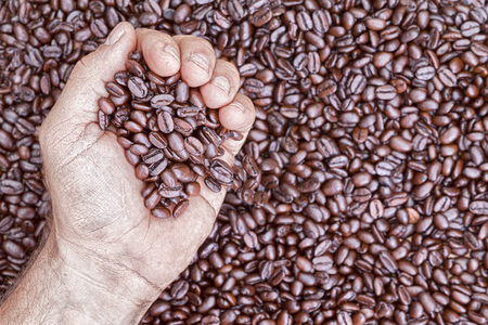 addictive drinking: Overhead view of hand holding coffee beans while placed against a pile more