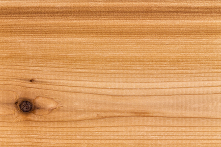 Single solid panel of decorative cedar wood with a distinctive grain and knots in a full frame close up view