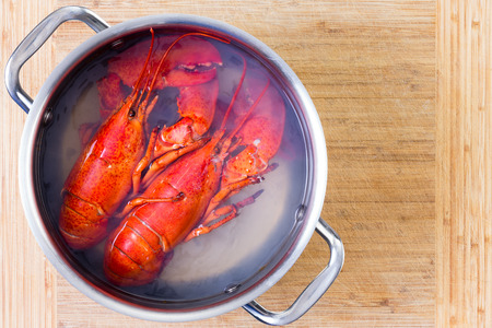 red cooked: Two red lobsters in a pot of boiling water cooling off on a wooden cutting board after being cooked, viewed from above with copy space