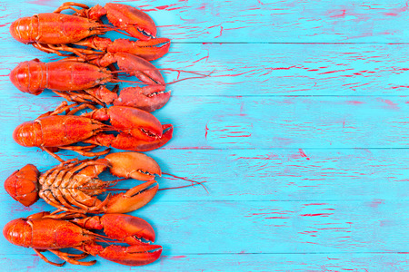 Colorful red lobster border on an exotic crackle glaze blue wood picnic table for a colorful summer or food background with one lobster turned upside down in the row, overhead view