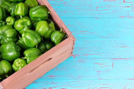 Corner of pink crate fully stocked with whole freshly washed green peppers on top of weathered blue wooden table