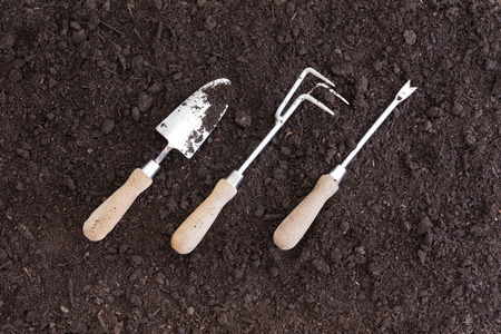 prongs: Three gardening tools placed at an angle in rich black soil as seen from an overhead view