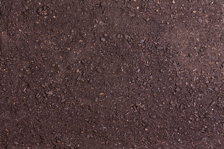 Top down view on full frame of soil for nature background about gardening or poor harvest