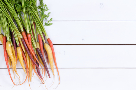 produces: Bunch of orange, yellow and red raw carrots with green tops over white wooden paneling with copy space for concept about organic produce