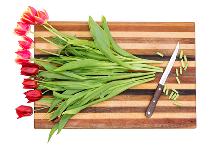 frailty: Trimming the stems of a bunch of colorful red tulips in preparation for arranging them in a vase, overhead view on a decorative striped cutting board Stock Photo
