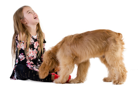Side view full length studio shot of a cute girl of elementary age laughing while playing with her dog against white background for copy space