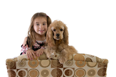 Young girl and golden cocker spaniel puppy on an armchair peering over the back at the camera side by side with a happy smile