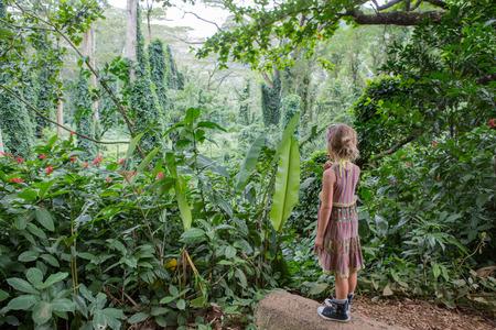 나 Ala Hele에서 롤리팝 먹는 아가씨 Monoa 폭포 흔적, 오아후, 하와이 서있는 낙원에 무성한 열 대 녹색 식물 감탄 서
