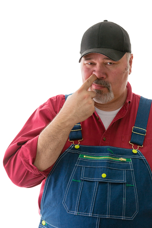 Middle-aged man in dungarees picking his nose sticking his finger up his nostril in a close up cropped view isolated on white