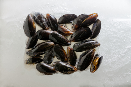 Pile of fresh cooked marine mussels in their shells arranged to the centre over a bed of crushed ice viewed as a flat lay from above