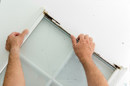 Homeowner replacing a damaged window frame in preparation for winter