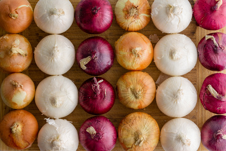 Neat alternating rows of different colored onions Banco de Imagens - 109536950