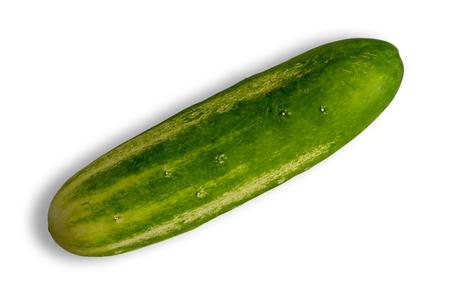 Fresh healthy whole green summer cucumber