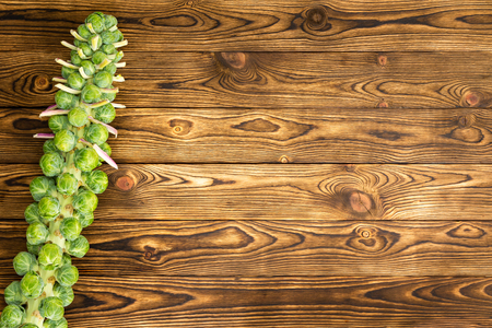 Brussel sprouts stalk on old rustic market table