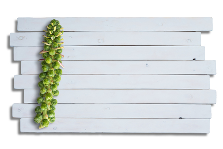 Stalk of green fresh young brussels sprouts on isolated market table Фото со стока