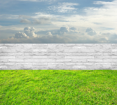 Green grass and white wall background