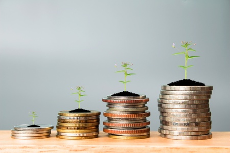 Financial planning, Money growth concept. Coins with young plant on table with backdrop gray.