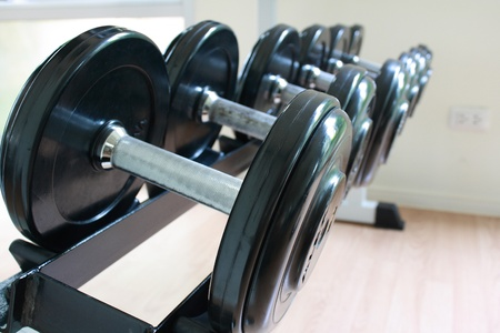 equipment dumbbell  in fitness room have many dumbbell size photo