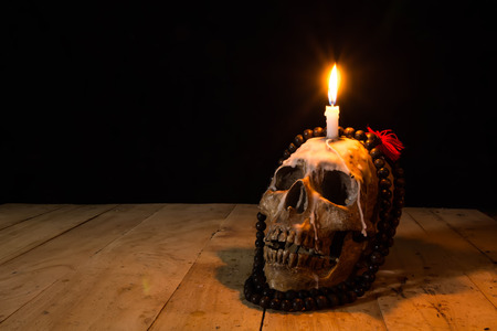 Human skulls lay on wooden floor and black background. Фото со стока