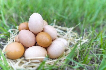 There are many eggs that are stacked together and have one egg that has a beautiful shape put on top with the background is green grass. Happy Easter day concept.