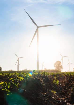 Wind turbines farm is an alternative electricity source, Concept of sustainable resources, orange sunlight in summer with wind generators turbines to backgrounds, Renewable energy concept.