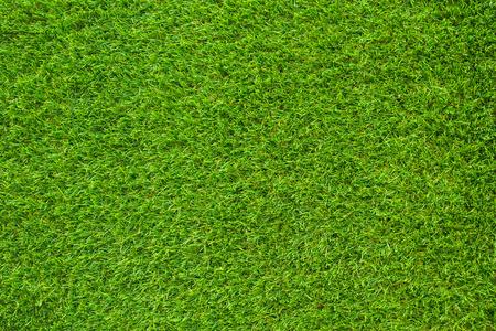 녹색 풀. 자연 배경 질감. 인공 잔디 녹색
