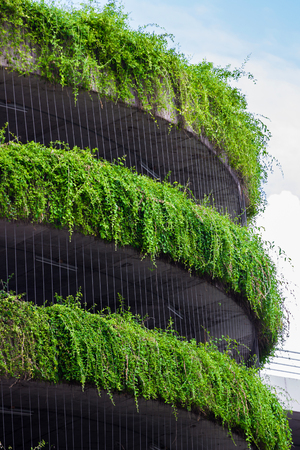 vegetation: building covered with vegetation Stock Photo