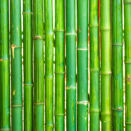 japones bambu: Bambú dispuestas en una vertical de fondo
