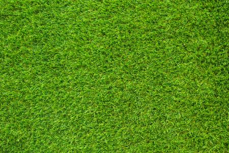 green grass. natural background texture.artificial Grassgreen