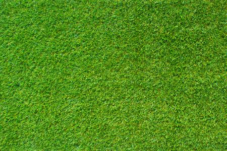 아름다운 녹색 잔디 텍스처