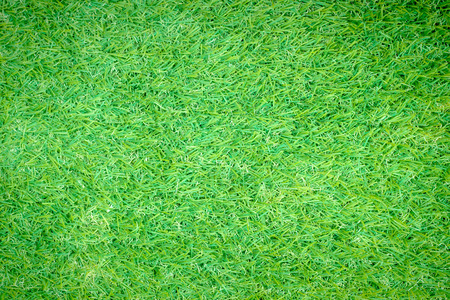 fairly: vignette green grass or the naturally walls texture Ideal for use in the design fairly.