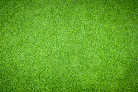 Green grass wall texture background or the green nature wall texture Ideal for use in the design fairly.