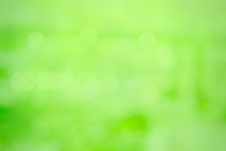 abstrack green blur background texture Ideal for use in the design .