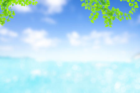 summer nature blur green paim leaf on tropical beach with blue bokeh sunset light background.Copy space for text about vacation business trips surfing in the summer concept.Paradise of beach Asia. Stock Photo