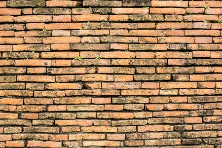 Old brick wall with green grass in the middle. Lets know the old brick wall.