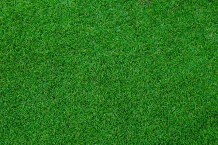 Green wall and green background of artificial grass designed for outdoor sports and business related to sports. 免版税图像