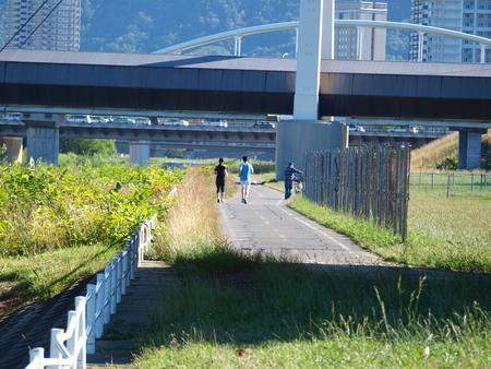 riverside landscape: Riverside landscape
