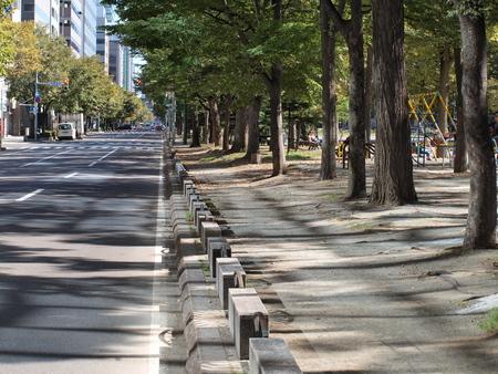 odori: Road of Odori Park Stock Photo